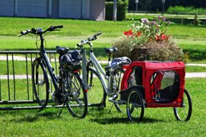 Selecting the right pet trailer for your bike
